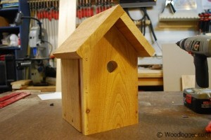 Window Birdhouse Completed Front