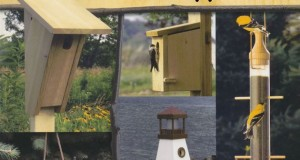 Easy to Build Birdhouses A Natural Approach-Book Review