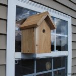 Window Bird House – Nestbox