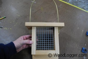 Suet Feeder Finished