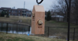 Woodpecker Feeder