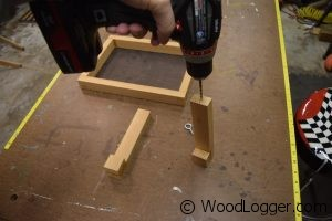 Window Bird Feeder Assembly